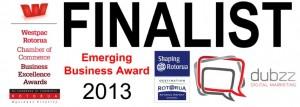 dubzz-business-awards-rotorua (Small)