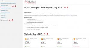 Dubzz Report Example 1234