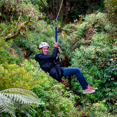 Canopy Tours - Dubzz Digital Marketing